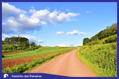 Caminho das Paineiras
