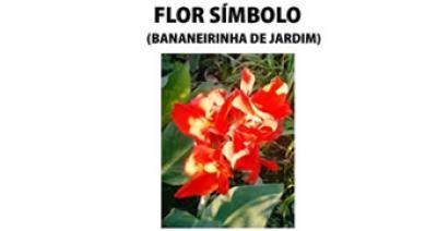 Flor Símbolo